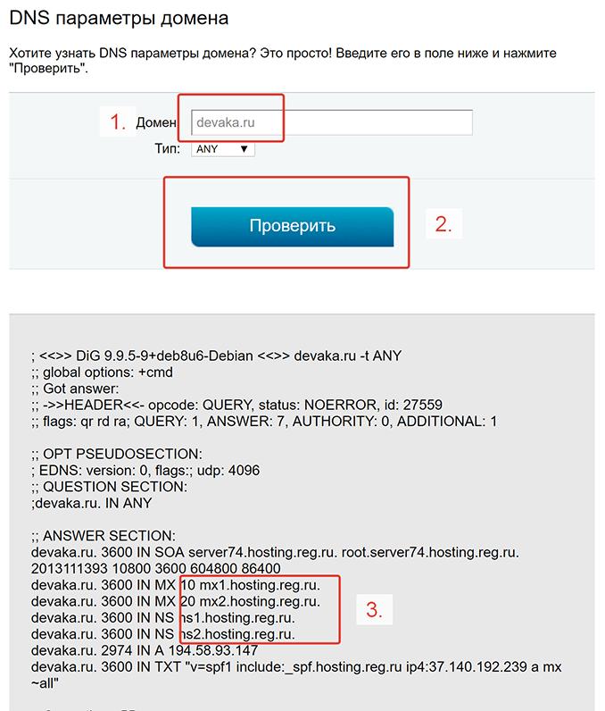 DNS параметры домена
